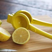 Juicing a Lemon Artful Dishes