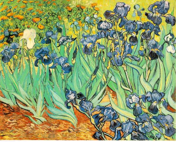 Vincent Van Gogh - Biography, Quotes & Paintings - The Art ...