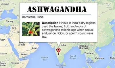 natural aphrodisiacs: ashwagandha