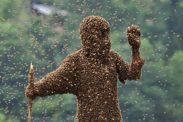 SHAOYANG, CHINA - JULY 16:  (CHINA OUT) Bees cover beekeeper Lu Kongjiang as he competes in a 'bee bearding' contest on July 16, 2011 in Shaoyang, Hunan Province of China. Wang Dalin won the contest after attracting 26.86kg of bees onto his body, covered only by a pair of shorts and swimming goggles.  (Photo by ChinaFotoPress/Getty Images)