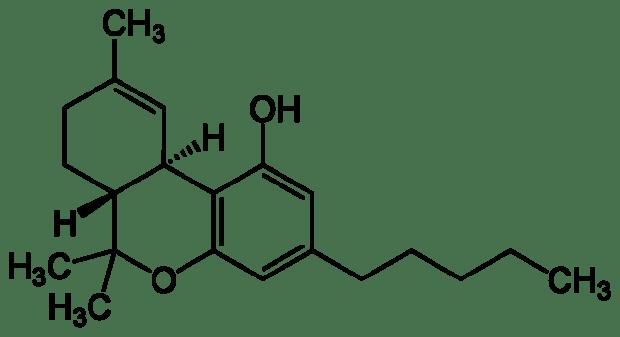 THC | Yikrazuul