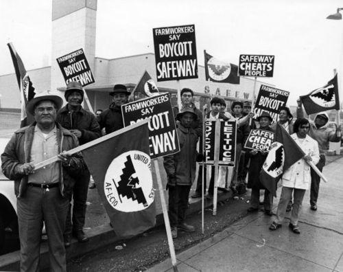 UFW protesters boycott Safeway