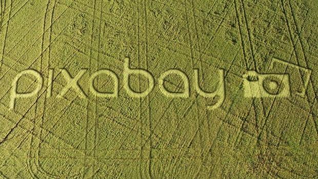 Pixabay/LoganArt