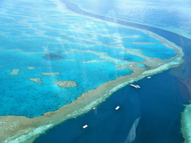 Photo: Great Barrier Reef