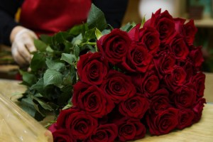 Online Red Rose Delivery in Bangalore-MyFlowerTree