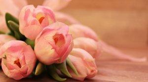 Tulips Flower Bouquet-MyFlowerTree