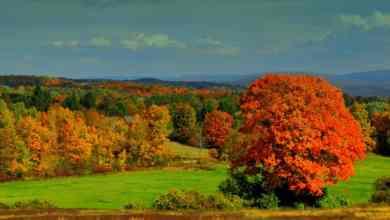 Photo of Top Lovely Vacation Rentals in Bennington-Greg Harriman Vermont