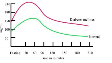 Photo of Solid Suggestions On How To Tolerate Diabetes