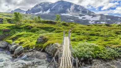 Photo of Top 10 National Parks In Norway You Must Visit