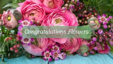 Photo of Congratulate Someone Personally with These Amazing Flowers