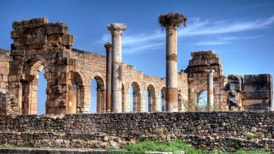 Photo of Volubilis in Morocco, how to get there and more tips
