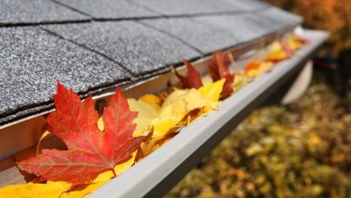 Photo of Top 3 Advantages of Hiring a Professional Gutter Cleaning Company