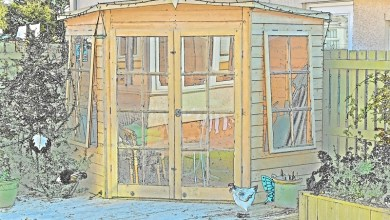 Photo of Why Invest in a Garden Summerhouse? Your Top Questions Answered