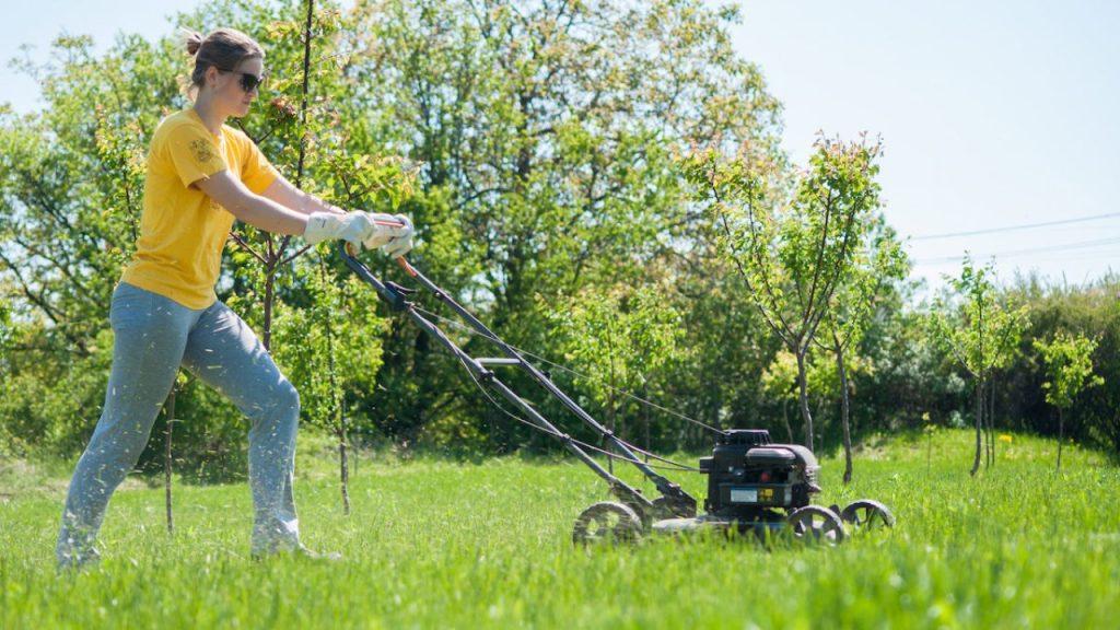 Landscape Services Salem UT