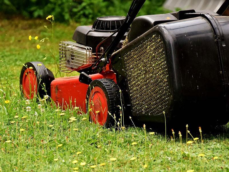 Local Lawn Care Salem UT