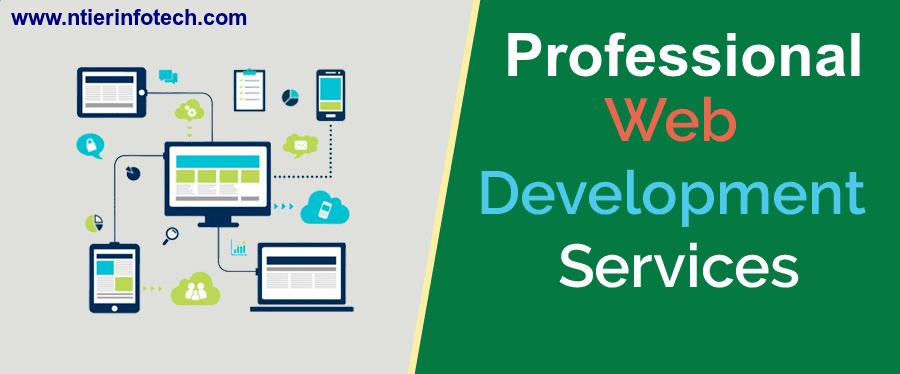 Professional Web Development Services