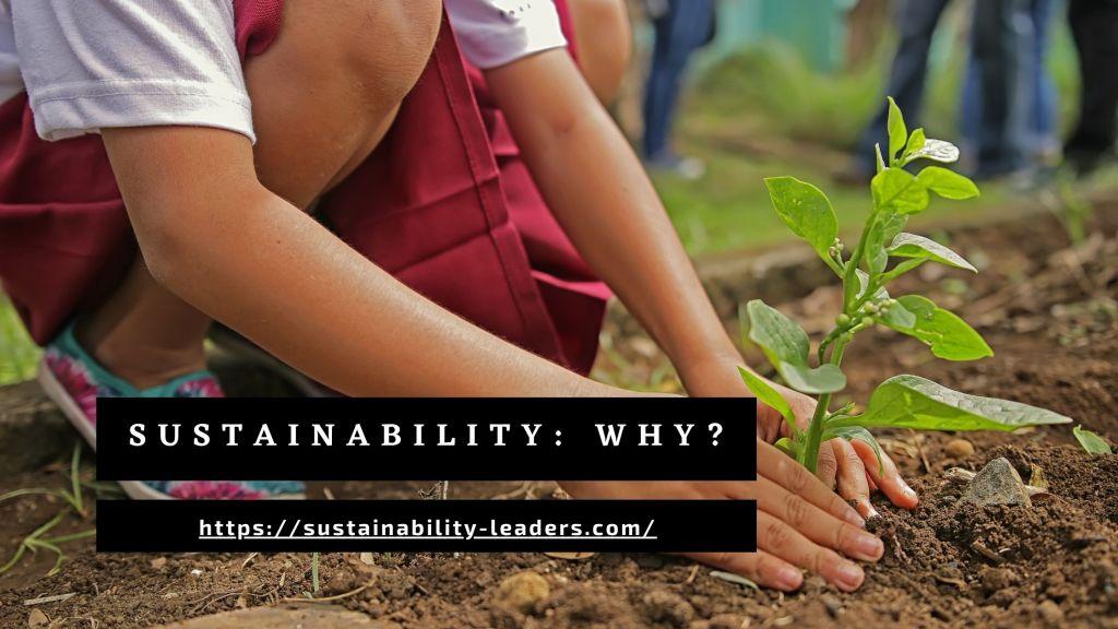 Sustainability: WHY?