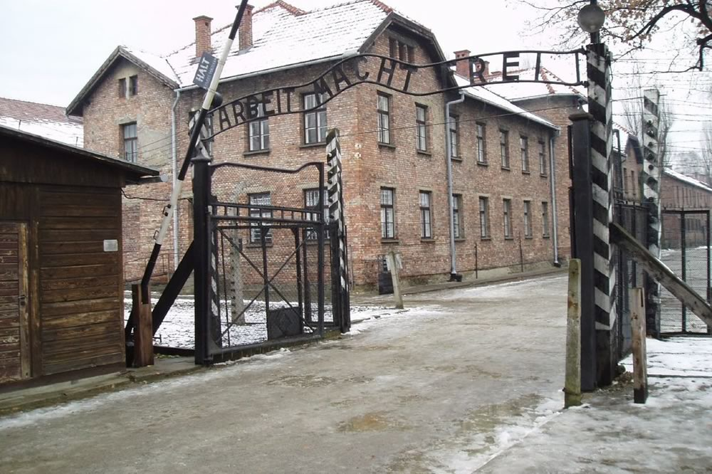 I sopravvissuti all'Olocausto sui social media