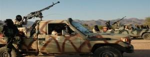 Mali-rebels