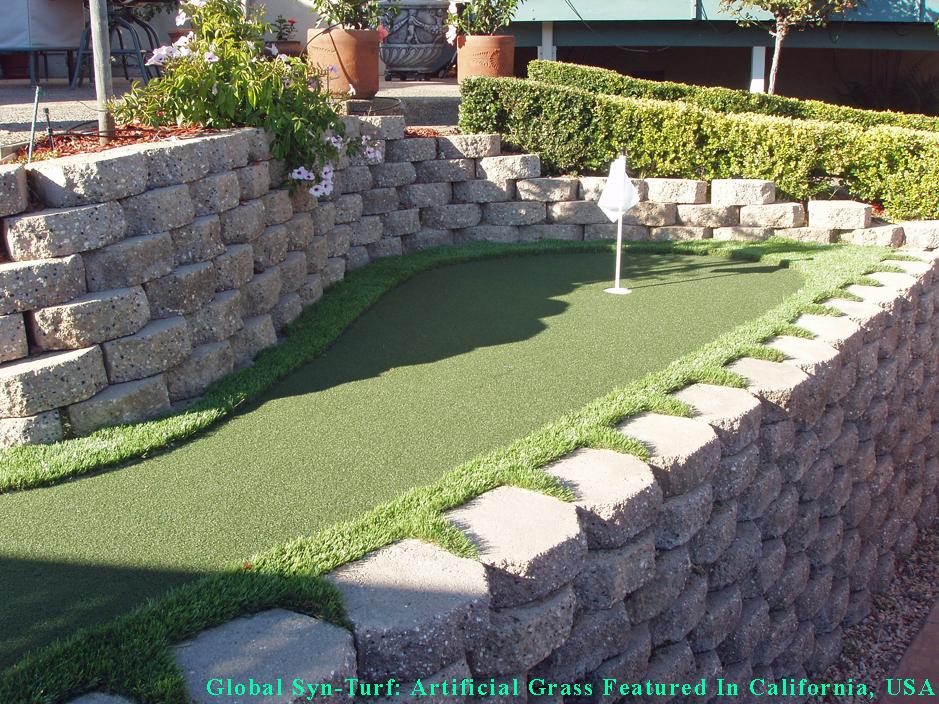 Grass Carpet Stanton, California Outdoor Putting Green ... on Putting Green Ideas For Backyard id=90038