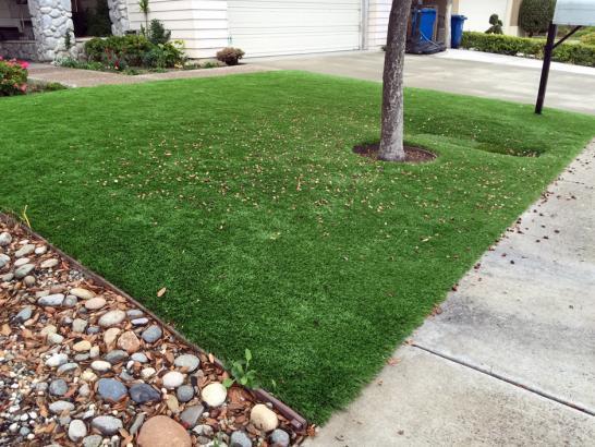 Synthetic Grass Cost Groves, Texas Garden Ideas, Backyard ... on Synthetic Grass Backyard Ideas id=82006