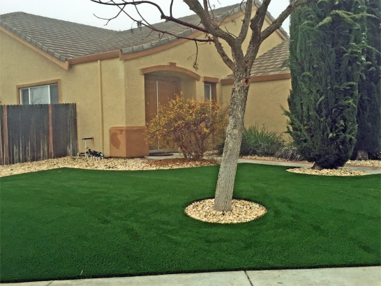 Synthetic Turf Supplier Clear Lake Shores, Texas Landscape ... on Turf Backyard Ideas id=75663