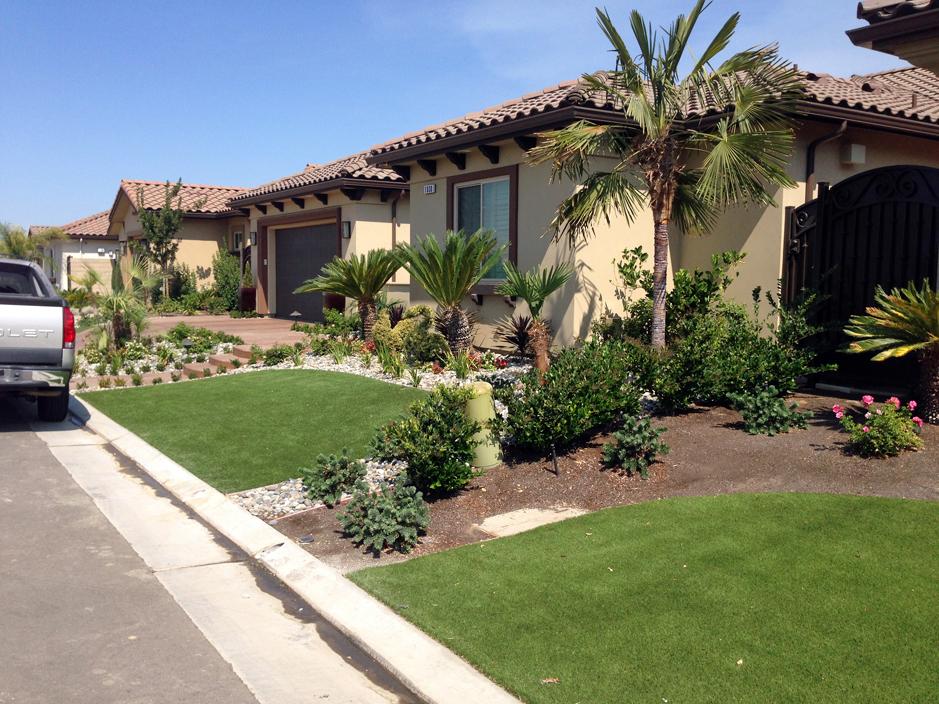 Grass Carpet Kaka, Arizona Landscape Design, Landscaping ... on Turf Yard Ideas id=24494