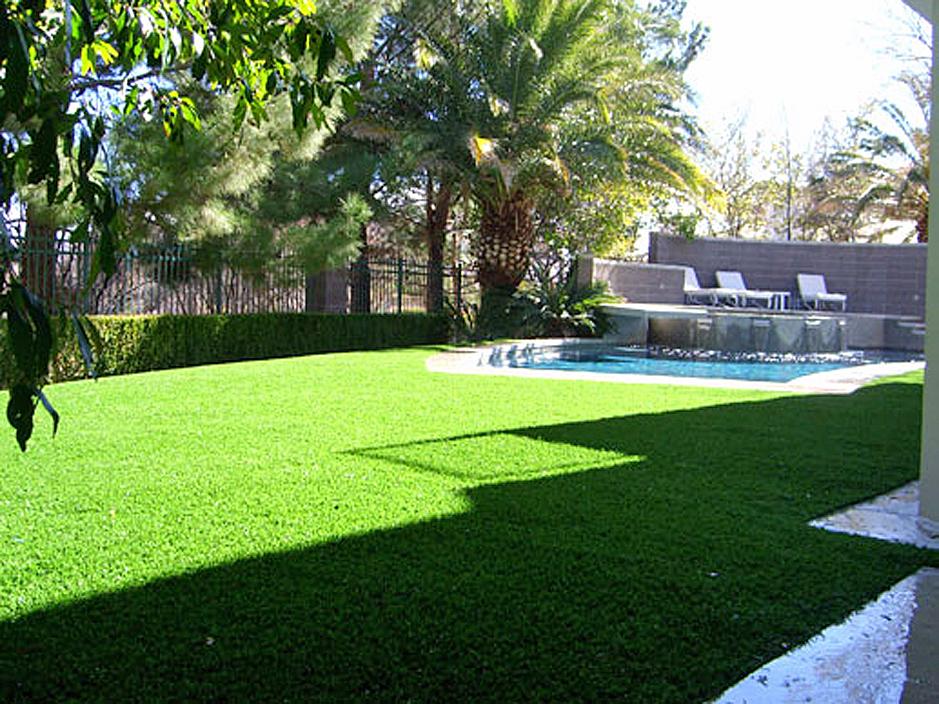 Artificial Grass Punta Rassa, Florida Design Ideas ... on Artificial Grass Backyard Ideas  id=61199