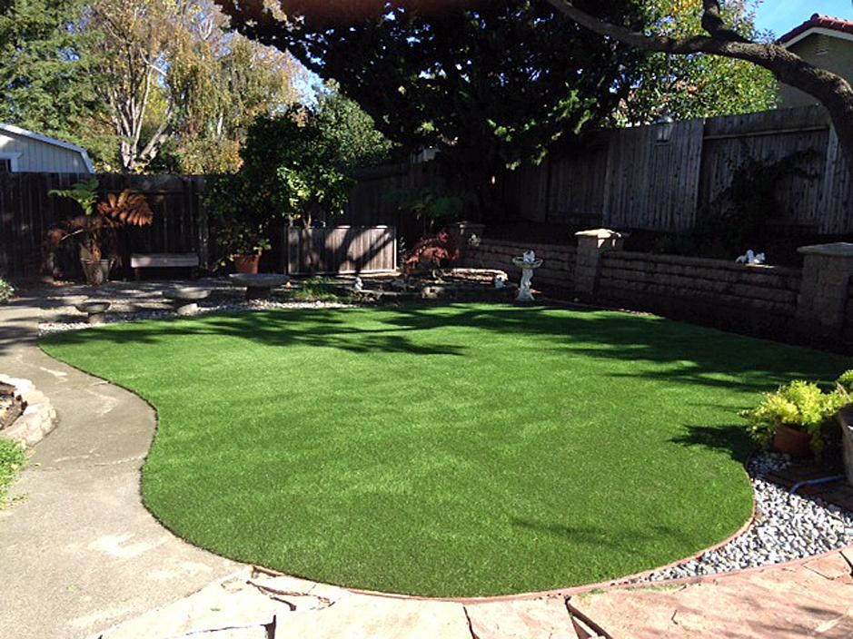 Artificial Grass Carpet Bay Hill, Florida Landscape Photos ... on Artificial Grass Backyard Ideas  id=66405