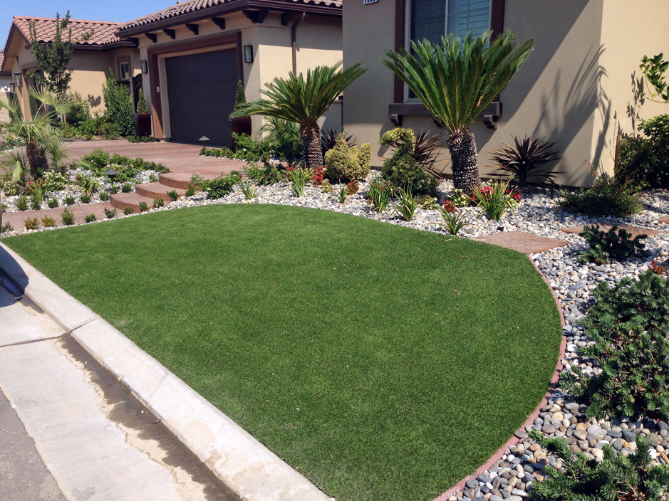Turf Grass Bellaire, Texas Rooftop, Front Yard Landscaping ... on Turf Backyard Ideas id=59142