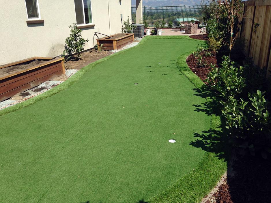 Fake Grass Carpet Tucson Estates, Arizona Backyard Deck ... on Artificial Grass Backyard Ideas  id=47281