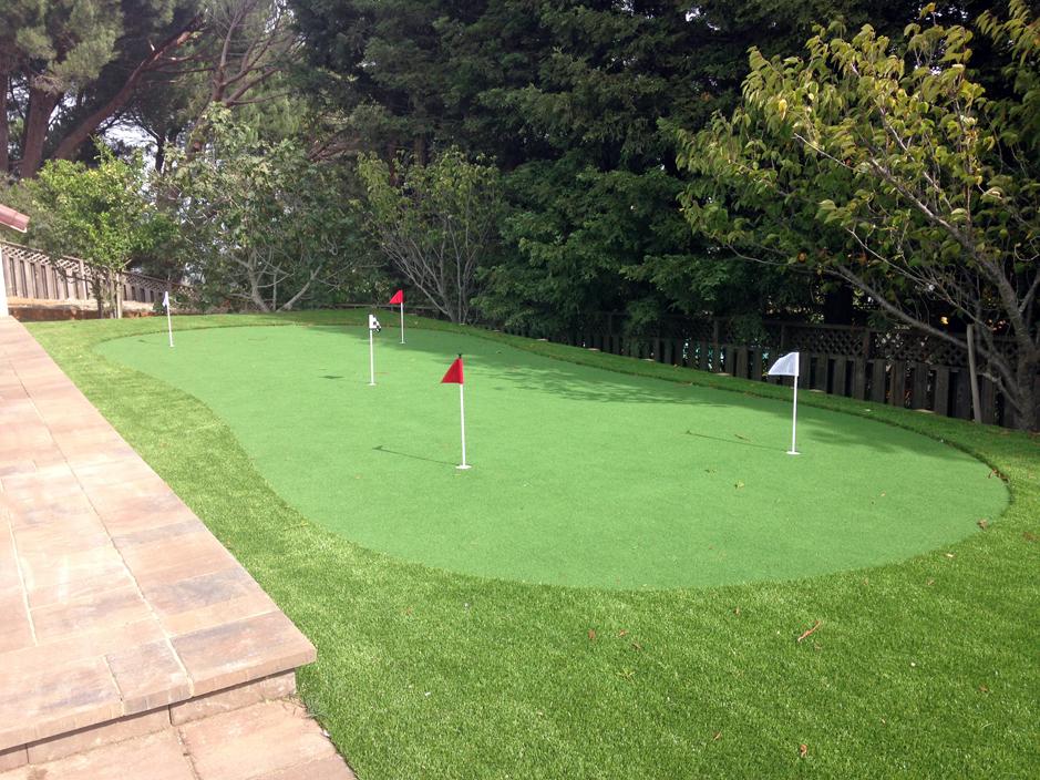 Artificial Turf Cost Inglis, Florida Indoor Putting Green ... on Turf Backyard Ideas id=20812