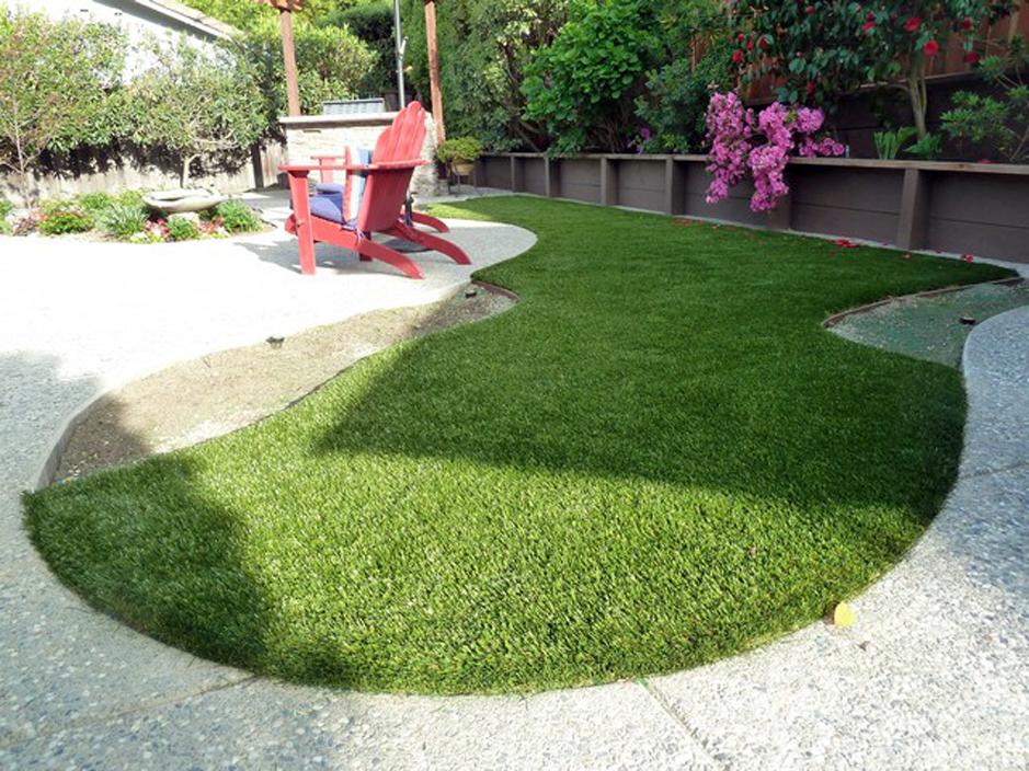 Installing Artificial Grass Gold River, California Lawn ... on Turf Backyard Ideas id=43419