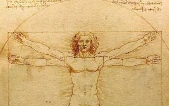 Artify - Zoom sur L'homme de Vitruve de Léonard de Vinci
