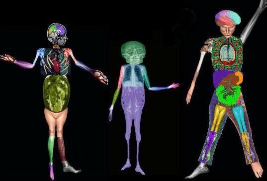 body-0014-web-res