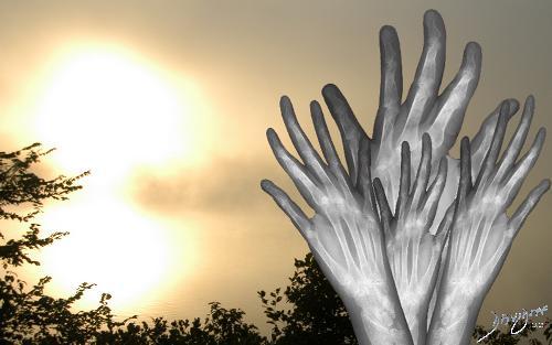 hands, hand, bones, phalanges, X-ray. radiology, winter, cold, sunrise, sun, warmth