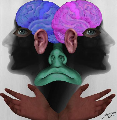 head, brain, eyes, ears, nose, mouth, sight, hearing taste, touch, smell, X-ray, Janus