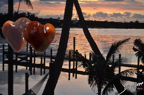 heart0039-catalogue-signed-500-72dpi