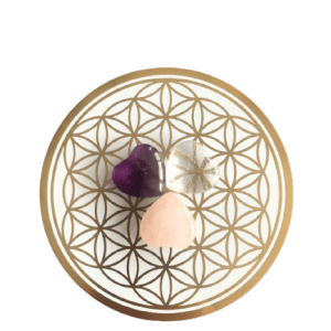 Flower of life kristal grid schijf