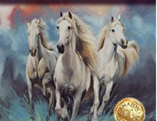 Your Three Horses – Todd Radus – Book Review