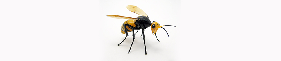 Wesley Fleming Makes Amazing Bugs Out of Glass!