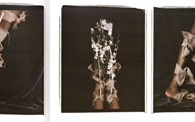 María Magdalena Campos-Pons' Art