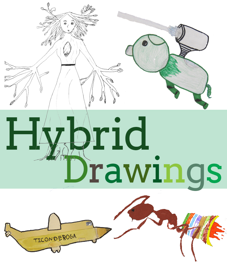 Hybrid Drawings with Kids