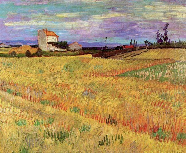 Wheat Field 1888