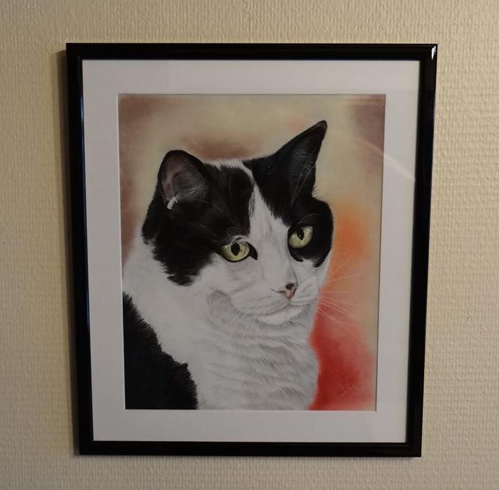 pastel chat noir et blanc