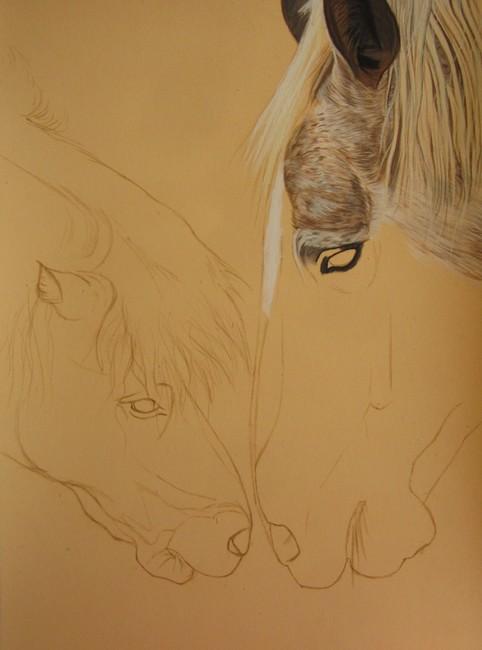 comment dessiner chevaux