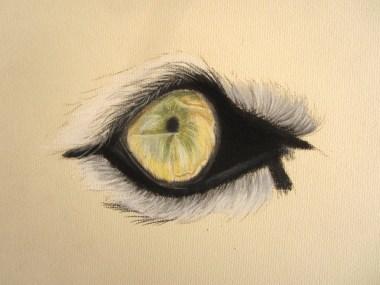 oeil de tigre pastel