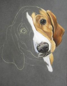portrait chien pastel