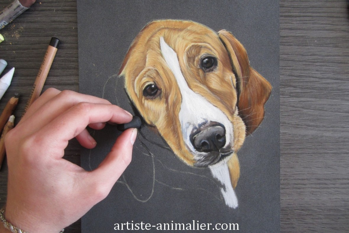 portrait chiot pastel