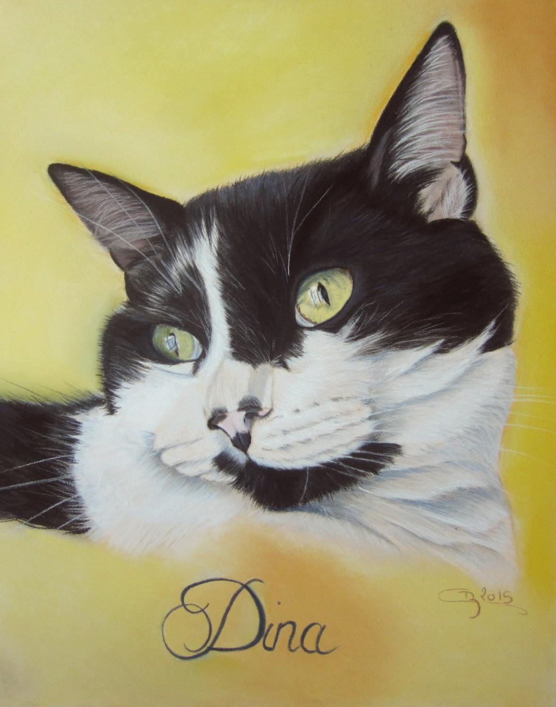 chat-noir-blanc-pastel